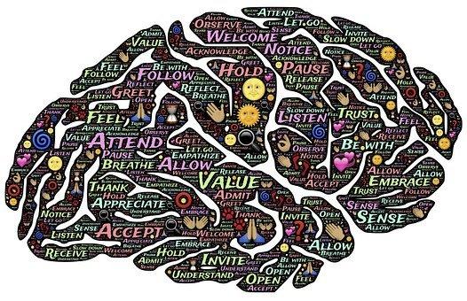 brain-744207__340